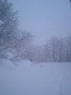 雪が深すぎて